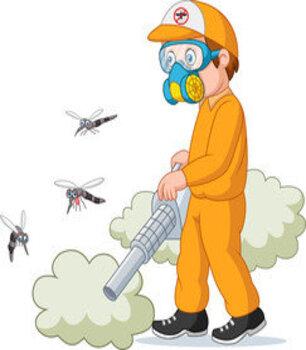 شركة مكافحة حشرات بخليص